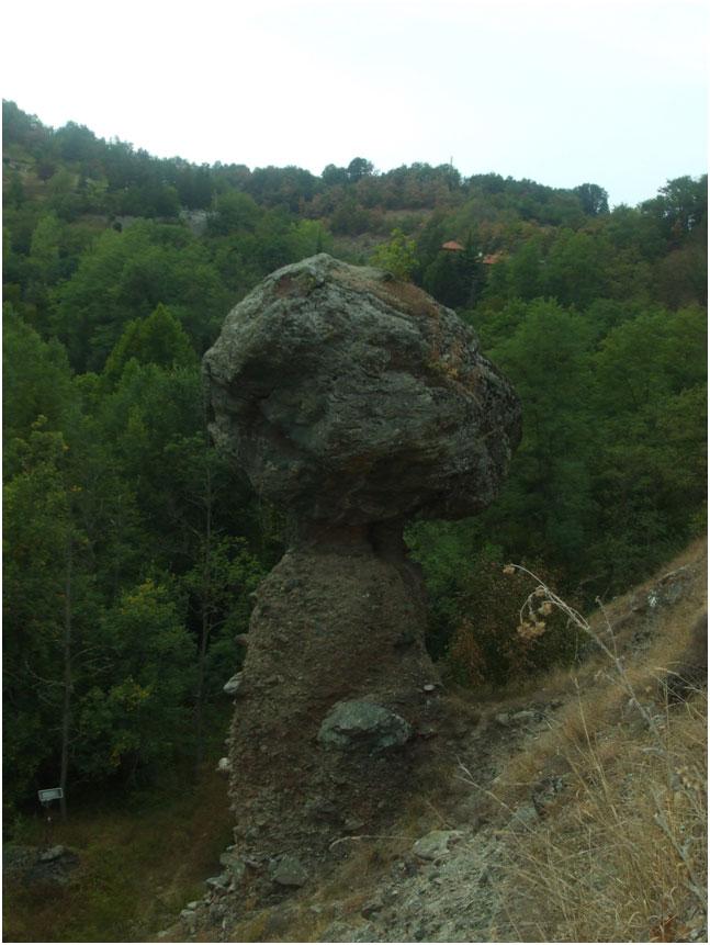 geomico